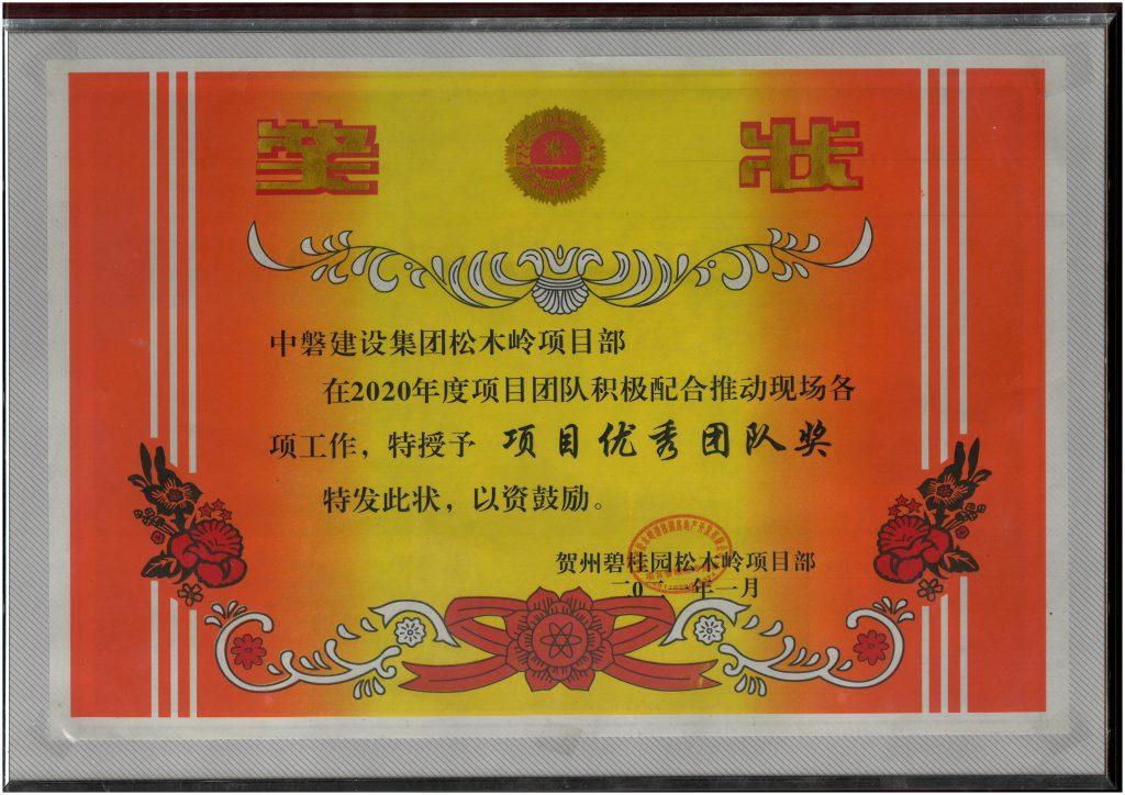 项目优秀团队奖(贺州碧桂园松木岭项目)